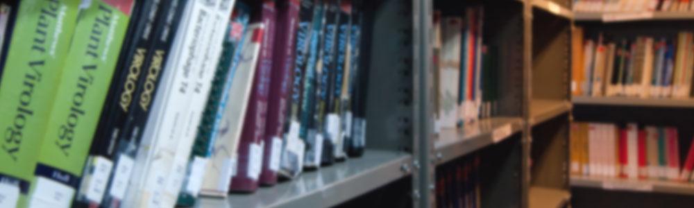 Becas de Formación Inicial en la Investigación para Estudiantes en etapa final de Carrera de Grado