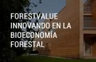 Imagen sobre ForestValue: Innovando en la Bioeconomía forestal