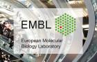 Imagen sobre Oportunidades laborales en European Bioinformatics Institute (EMBL-EBI)